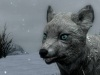 Whiter Snow Fox, мод к игре The Elder Scrolls 5: Skyrim